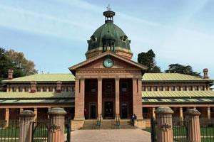 Local & District Court Appearances